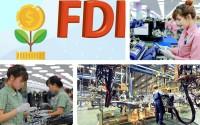 Viet Nam FDI overview